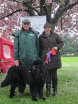 Best in Show dog Bertie, with owner Linda Smith and the Judge David Spencer.